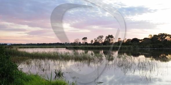 Edithvale-Seaford Wetlands