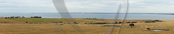 Western Port panorama