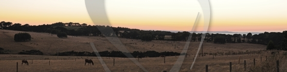 Red Hill panorama