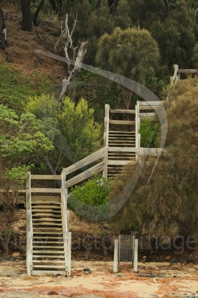 Angle staircase in forest