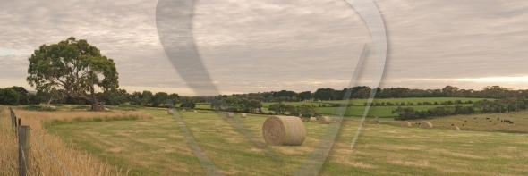 Stock Image: Panorama With Haystack