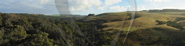 Hills in Mornington Peninsula
