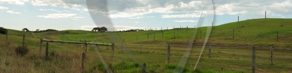 Horse farm panorama