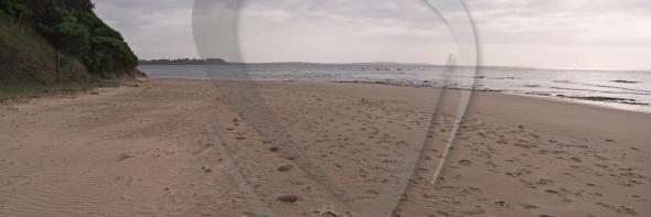Panorama at Pt Leo