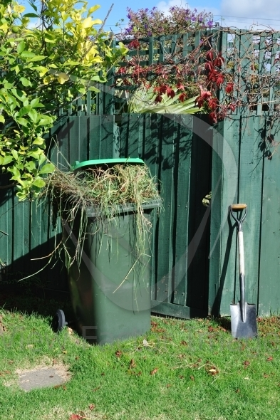 Green bin and spade in backyard