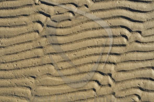 Sandy waves texture