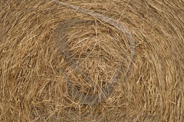 Rolling haystack texture