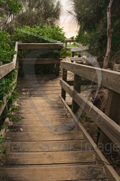 Wooden stairs in forest