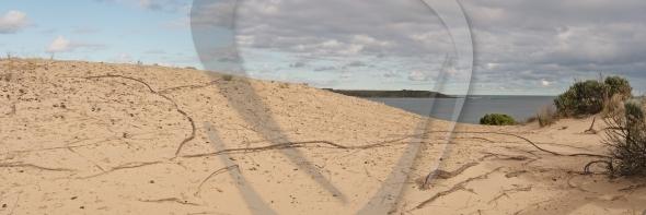 Dunes at Philip Island