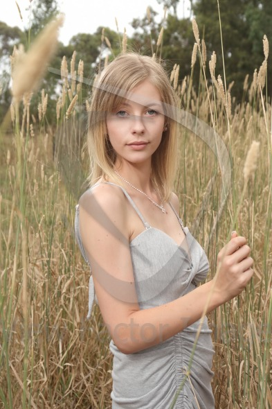 Blond in tall grass