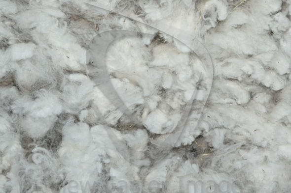 Washed wool texture