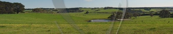 Panorama with pond and hills