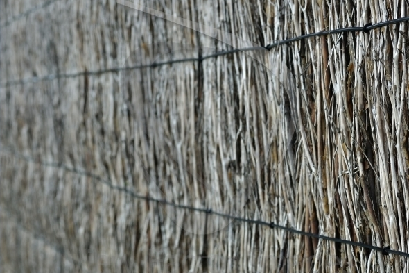 Brushwood fence background