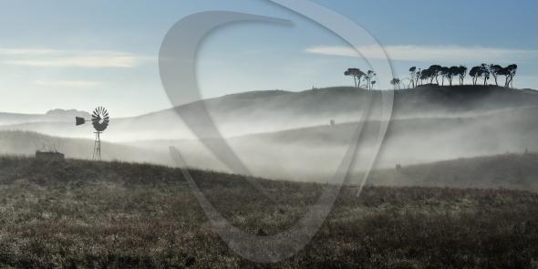 Australian windmill in fog