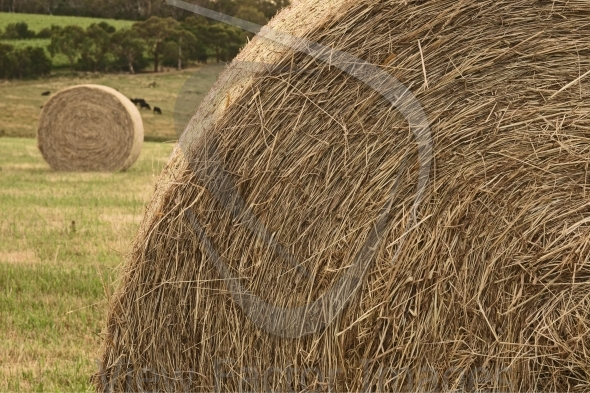 Details of haystack at farmland